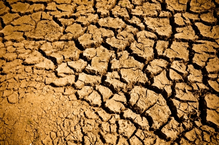 Cracked and Arid Ground Dry without water