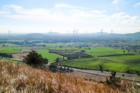 Landscape of Jeju Island with wind power plants