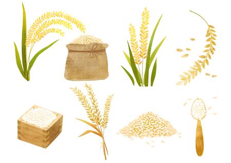 Ilustración de Autumn object illustration - different type of paddy that makes rice - Imagen libre de derechos