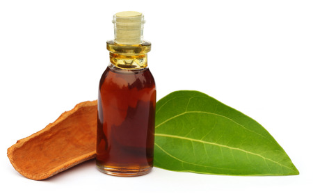 Cinnamon leaf with bark and essential oil over white