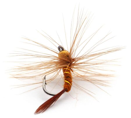 Photo for Hand made fishing fly with hook over white background - Royalty Free Image