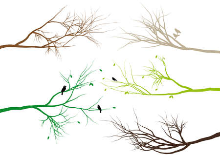 tree branches with birds and leaves
