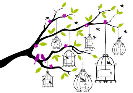 tree branch with open birdcages and birds