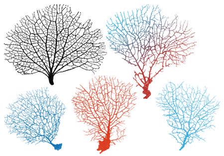 Illustration pour detailed black sea fan corals, vector set - image libre de droit