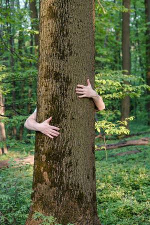 Photo pour Tree hugging. Close-up of hands hugging tree - image libre de droit