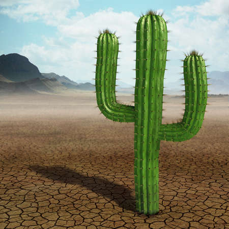 Very high resolution 3d rendering of a cactus in the desert.