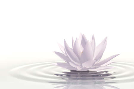 Photo pour Very high resolution 3d rendering of a floating waterlily over white - image libre de droit