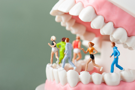 Photo for Model of the teeth - Royalty Free Image