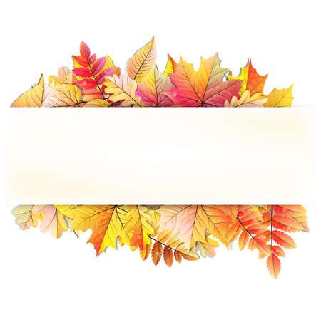 Autumn frame with fall leaf.