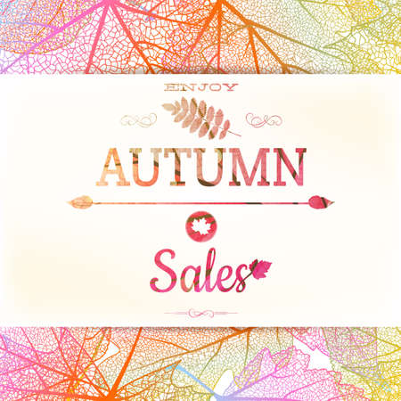 Autumn sale background. EPS 10 vector file includedのイラスト素材