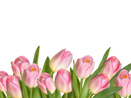 Illustration for Beautiful realistic tulip bouquet. EPS 10 vector file included - Royalty Free Image