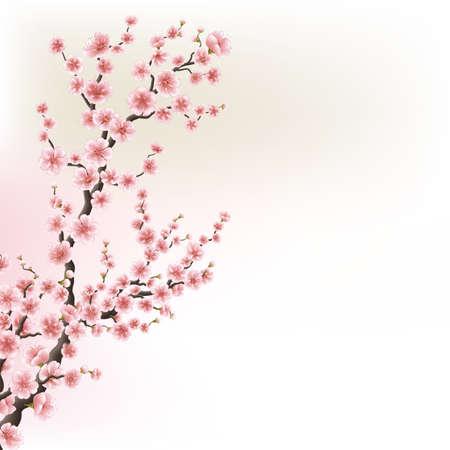 Illustration pour Blooming Cherry Blossom Branches card. EPS 10 - image libre de droit