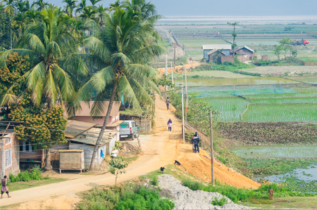 Photo pour Village in Assam, India with villagers walking along the road, near rice fields - image libre de droit