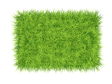 Green grass rectangle - vector nature background