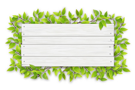 Ilustración de Empty white wooden sign with space for text on a background of tree branches with green leaves. - Imagen libre de derechos