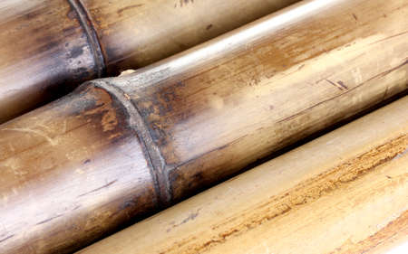 dry bamboo background