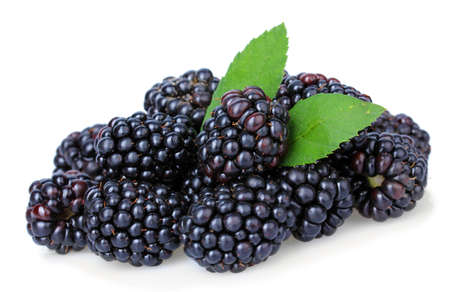 Sweet blackberries isolate on white