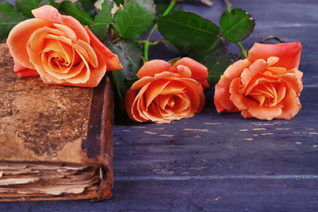 Tea roses with old book on color wooden table background