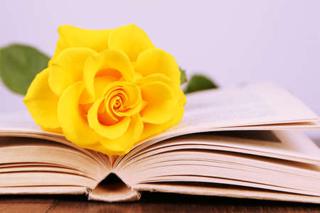 Book with yellow rose on wooden table on light background