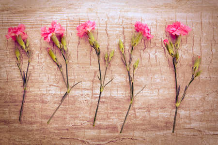Beautiful composition with fresh flowers on wooden table