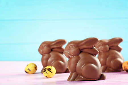 Chocolate Easter bunnies on color background