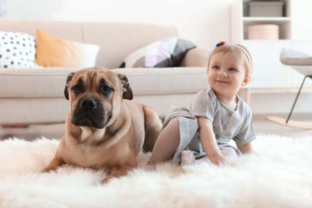 Cute little child with dog at home