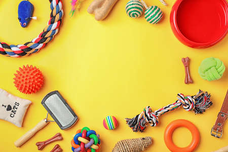 Photo pour Flat lay composition with accessories for dog and cat on color background. Pet care - image libre de droit
