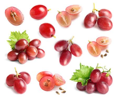 Photo pour Set with fresh grapes on white background - image libre de droit
