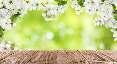 Photo pour Wooden table and tree branches with tiny flowers against blurred background, space for text. Amazing spring blossom - image libre de droit