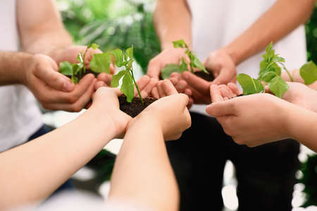 Photo pour Group of volunteers holding soil with sprouts in hands outdoors, closeup - image libre de droit