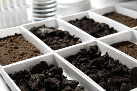 Photo pour Containers with soil samples on table. Laboratory research - image libre de droit