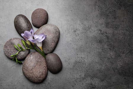 Photo for Spa stones and freesia flowers on grey table, flat lay. Space for text - Royalty Free Image