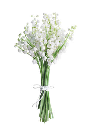 Photo pour Beautiful lily of the valley flowers isolated on white - image libre de droit
