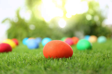 Photo for Colorful Easter eggs on green grass outdoors - Royalty Free Image
