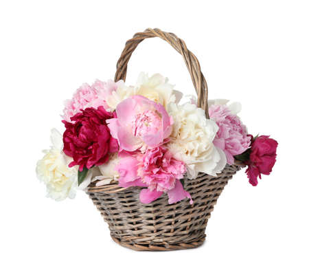 Photo pour Beautiful peonies in wicker basket isolated on white - image libre de droit