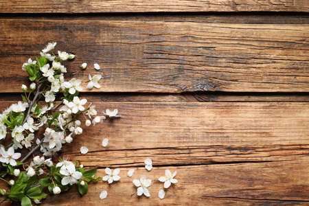 Photo pour Blossoming spring tree branches as border on wooden background, flat lay. Space for text - image libre de droit