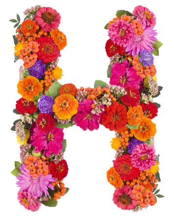 H, flower alphabet isolated on white