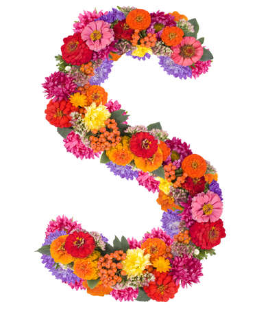 S, flower alphabet isolated on white
