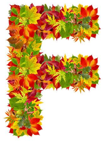 F, autumn alphabet isolated on white