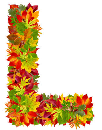 L, autumn alphabet isolated on white