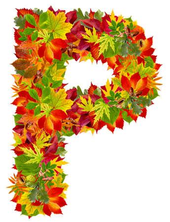 P, autumn alphabet isolated on white