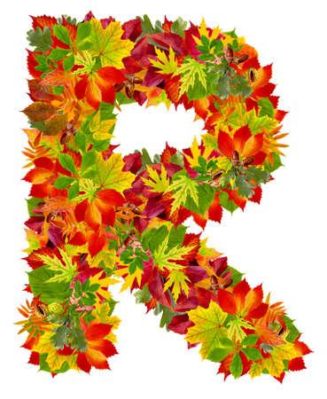 R, autumn alphabet isolated on white