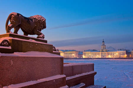 Photo for The lion sculpture in bronze at the Admiralty embankment and Kunstkamera at night in Saint Petersburg, Russia - Royalty Free Image