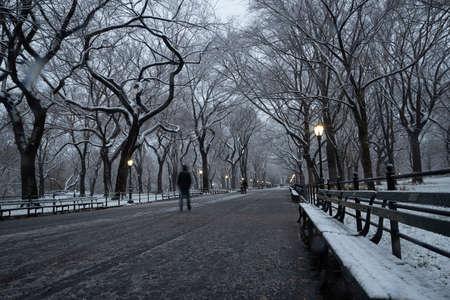 Foto de Winter landscape in Central Park. New York City. USA - Imagen libre de derechos