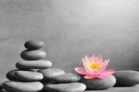 Photo pour Stack of grey massage stones on grey background and lotus flower. Spa concept. - image libre de droit