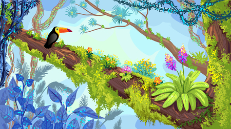 Jungle forest. Illustration of toucan sitting on the tree. Vector hand-drawn rainforest, tropical background