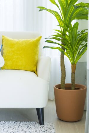 Photo pour Modern living room interior with yellow pillow on it and green plant pot beside white sofa. - image libre de droit