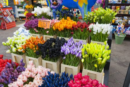 Photo for A lot of different color tulips in the shop at Amsterdam flower market (Bloemenmarkt), Netherlands. - Royalty Free Image