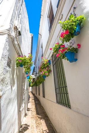 Calleja de las Flores in Barrio de la Juderia of Cordoba, Andalusia, Spain.