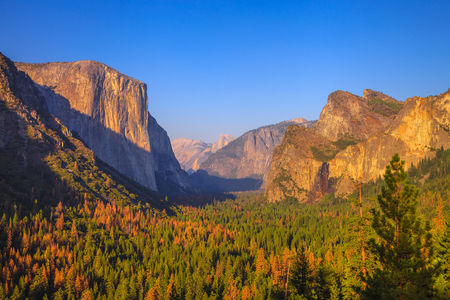 Yosemite National Park at iconic Tunnel View overlook. Front view of popular El Capitan and Half Dome at sunset. Summer american holidays. California, United States.